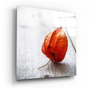Skleněný obraz Insigne Dry Leaf,100 x100cm