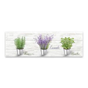 Obraz Styler Canvas Shabby Herbs, 27 x 75 cm