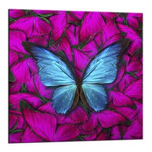 Obraz Styler Glasspik Red Butterfly, 20 x 20 cm