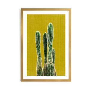 Obraz Surdic Mustard Background Cactus, 40 x 60 cm