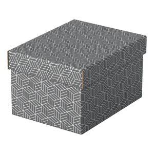Sada 3 šedých úložných boxů Leitz Eselte,20x25,5cm