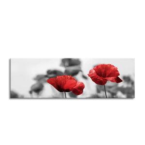 Obraz Styler Glas Red Poppy, 50 x 125 cm