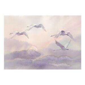 Velkoformátová tapeta Artgeist Flying Swans, 400x280cm