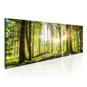 Obraz na plátně Bimago Daylight 135x45cm