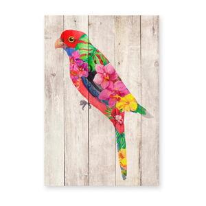 Nástěnná dekorace z borovicového dřeva Madre Selva Flowers Parrot, 60 x 40 cm