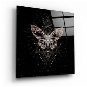 Skleněný obraz Insigne Da Vinci Style Butterfly,40 x40cm